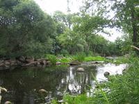 Ilžas upe
